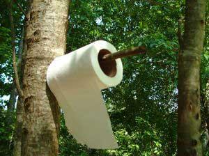 практичная туалетная бумага